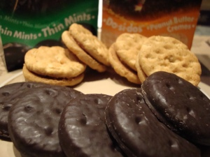 Girl Scout Cookie Favorites
